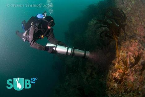 Scuba Gear | Understanding Different Types of Dive Lights | All about water, the oceans, environmental issues | Scoop.it
