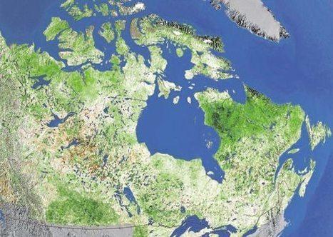L'Arctique devient vert: beau mais inquiétant | Confidences Canopéennes | Scoop.it
