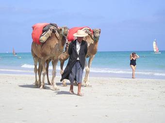 Séjour de Laurent | voyager en  tunisie | Scoop.it