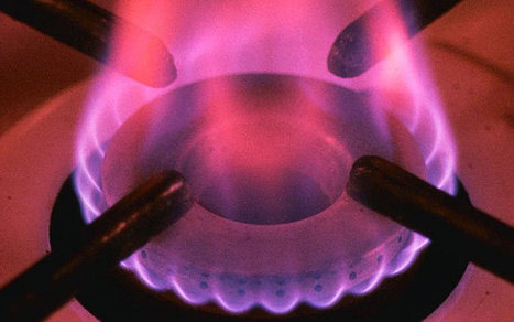Government denies asking Big Six for energy price freeze - Telegraph | Unit3 - Business Economics & the distribution of wealth | Scoop.it