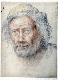 Nu in Boijmans: Fra Bartolommeo | Arts vivants, identité européenne - Living Arts, european Identity | Scoop.it