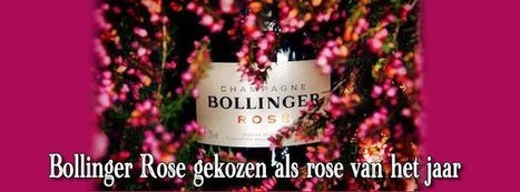 Bollinger Rose champagne van het jaar 2014 | The Champagne Scoop | Scoop.it