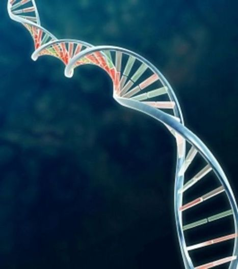 Travailler de nuit provoque le chaos dans les gènes - Maxisciences | Travail en horaires atypiques | Scoop.it