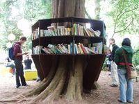 Bookcrossing et boîtes à livres | Transition | Scoop.it