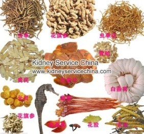 How Can PKD Be Treated In Stage 3 CKD | The doctor of traditional Chinese medicine treatment of chronic kidney disease | Scoop.it