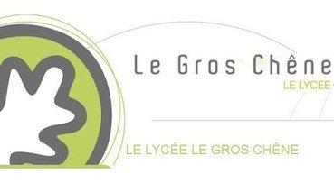 Site officiel Ligue de Bretagne : Section Sportive Régionale de Pontivy : Inscription au concours d'entrée 2014-2015 | Les animations autour du lycée Le Gros Chêne | Scoop.it
