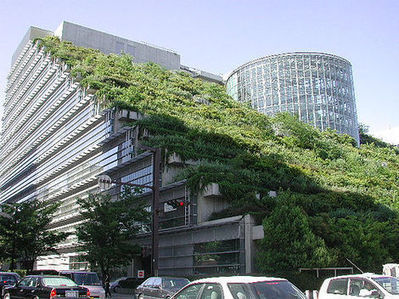 Green Roofing - WDIY | GreenRoofs | Scoop.it
