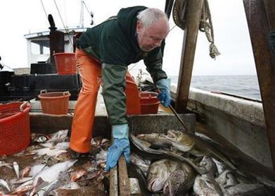 Fading fishermen: A historic industry faces a warming world | Farming, Forests, Water, Fishing and Environment | Scoop.it