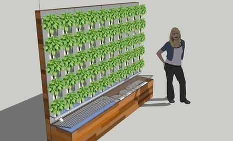 25 Aquaponic Farms in 25 Schools | Vertical Farm - Food Factory | Scoop.it