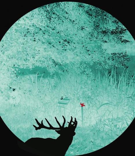 Safari dans le noir : Labyrinthe musical pour animaux ! GMVL -  ECHOSCIENCES - Grenoble | DESARTSONNANTS - CRÉATION SONORE ET ENVIRONNEMENT - ENVIRONMENTAL SOUND ART - PAYSAGES ET ECOLOGIE SONORE | Scoop.it