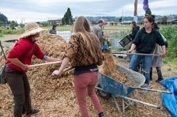 University strikes back against Occupy theFarm | Sustainable Farming | Scoop.it