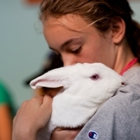 SPCA Animals Summer Camps: Children learn about compassion and empathy when caring for animals | Empathy and Animals | Scoop.it