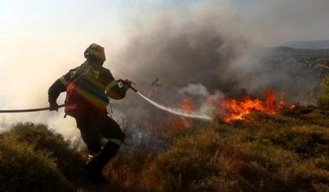 Υπό πλήρη έλεγχο η φωτιά στα Οινόφυτα | tanagra | Scoop.it