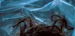 100 BD numériques à 0,89€ pour les 2 ans de bdBuzz et les 40 ans d'Angoulême / High tech / Web / Jeux Vidéo / Guide / univers / Journal / Lyon Capitale - le journal de l'actualité de Lyon et du Gra... | Actu Jeux vidéo | Scoop.it