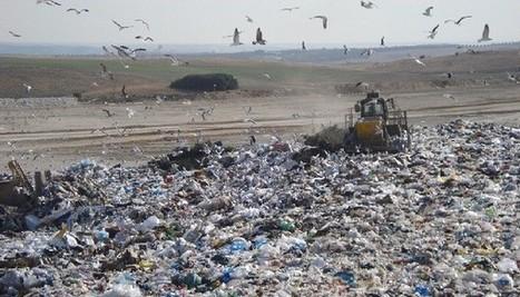 Bolsas de plastico biodegradables - erenovable.com | Educacion, ecologia y TIC | Scoop.it