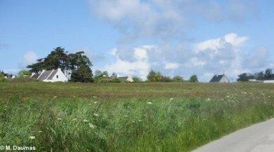 Petit massacre immobilier en perspective à Belle-Ile, en Bretagne - Reporterre | Belle Ile | Scoop.it