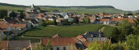 "Champagne's ""Antiquated"" Cru Classification - Wine-Searcher 