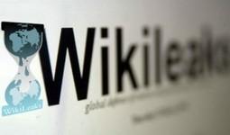 El Partido Pirata sueco denuncia a los bancos por bloquear a Wikileaks | Uso inteligente de las herramientas TIC | Scoop.it