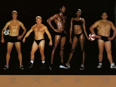 Comparing Vastly Different Body Types of Olympic Athletes | lucileee* | Scoop.it