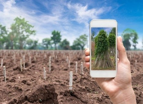 Europe's smart agriculture opportunity | Digital for real life | Scoop.it