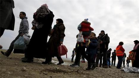 More than 10,000 refugee children missing in Europe   IB LANCASTER GEOGRAPHY CORE   Scoop.it
