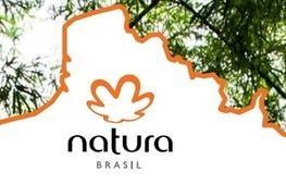 Le Brésil chez vous: atelier bien-être | CELSA Entreprendre - Innovation in Communication and Technologies | Scoop.it