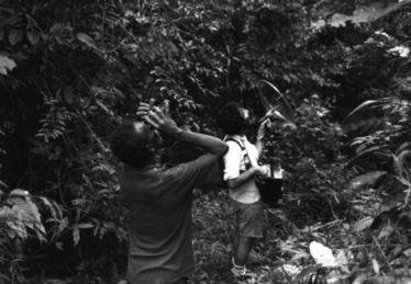 Revue Wildproject - Ecoutes et mondes animaux   DESARTSONNANTS - CRÉATION SONORE ET ENVIRONNEMENT - ENVIRONMENTAL SOUND ART - PAYSAGES ET ECOLOGIE SONORE   Scoop.it