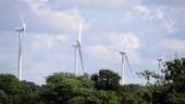 Le Royaume-Uni compte sur l'éolien… et les smart grids - Les-SmartGrids.fr | Cleantech & ENR | Scoop.it