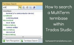 How to search a MultiTerm termbase within Trados Studio (by Jayne Fox) | Translation & Terminology | Scoop.it