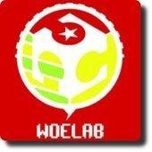 WoeLab le JerryClan du Togo a fêté ses deux ans d'existence | Innovation sociale | Scoop.it