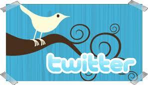¿Quisiera usted ser tuitcoordinador? | Ani Mesa | Libro blanco | Lecturas | Scoop.it
