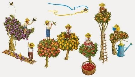 Ukraine Independence Day 2014: Google Doodle - Doodle 4 Google Today | SEO Traffic Engine | Scoop.it
