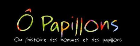 Film - Ô Papillons | Remue-méninges FLE | Scoop.it