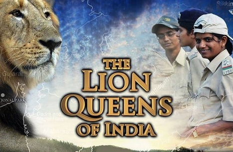 The Lion Queens of India | Eco-feminism & the Ecology of Fear | Scoop.it