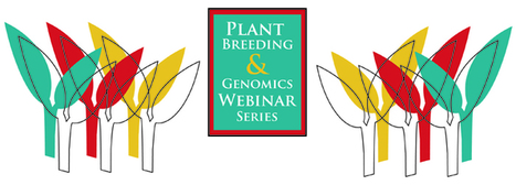 Special Webinar Series of NAPB in partnership with PBCC and PBG starts April 29th | Plant Breeding and Genomics News | Scoop.it