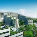 Bringing natural life into buildings - eco-business.com | Vertical Farm - Food Factory | Scoop.it