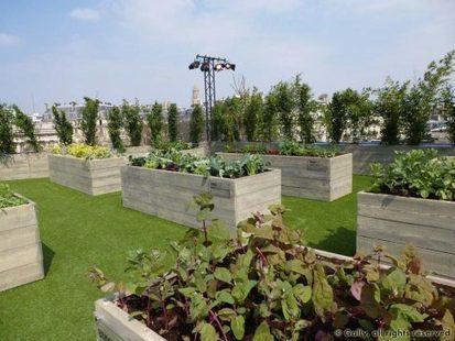 Agriculture urbaine | Agronomie sur le web | Scoop.it