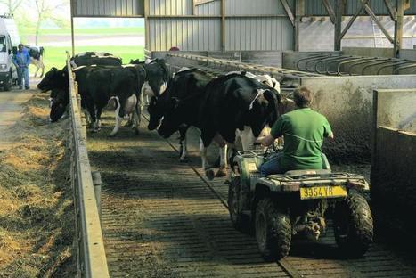 Qui va piloter les élevages laitiers de demain ? - l'Agriculteur Normand - l'Eure Agricole | BTPL | Scoop.it