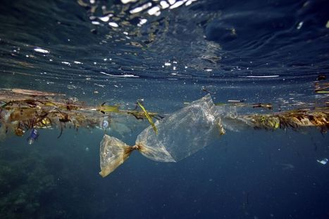 Plane Search Shows World's Oceans Are Full of Trash | Geography in the classroom | Scoop.it