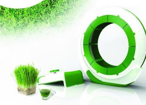 'N': An indoor hydroponic system for growing wheatgrass | Vertical Farm - Food Factory | Scoop.it