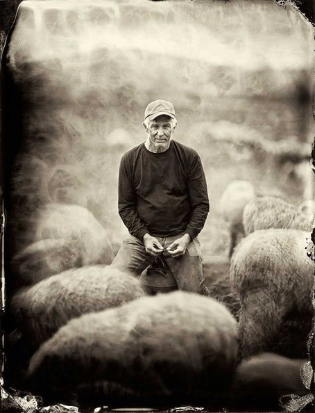 Francesco Mastalia: Organic | Photography Now | Scoop.it