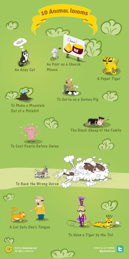 10 English Animal Idioms & their Meanings | grammar.net | EFL-ESL, ELT, Education | Language - Learning - Teaching - Educating | Scoop.it