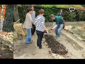 L'Appel de la Chapelle : reportage multimédia sur la transition dans le18ème | Moove it !  On se bouge ! | Scoop.it