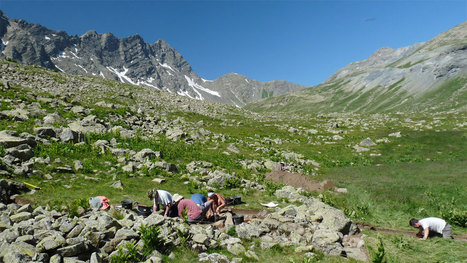 People shaped the high Alpine environment from early times - Archaeology News from Past Horizons | Archaeology News | Scoop.it