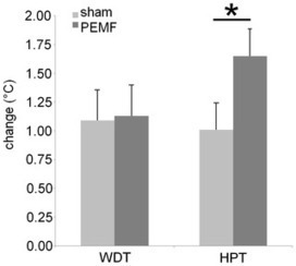 PLOS ONE: A Novel Magnetic Stimulator Increases Experimental Pain Tolerance in Healthy Volunteers - A Double-Blind Sham-Controlled Crossover Study   Electroceuticals   Scoop.it