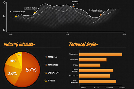 Infographics: More Than Meets Eye... | Non-profit Tech | Scoop.it