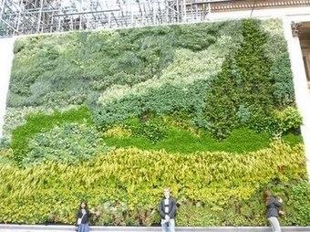 Jardín vertical reproduciendo un Van Gogh en Londres   Cultivos Hidropónicos   Scoop.it