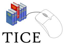 Outils TICE | La saisie vocale de Google Docs | culture Web 2.0 | Scoop.it