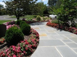 Landscaping the Driveway: Paving Paradise to put up a Parking Lot | Landscaping Designers Sydney | Scoop.it