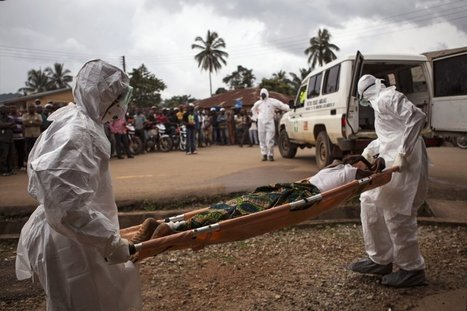 Undetected Ebola infections suggest the disease spread more widely than thought | EM 421 Medical Disaster and Emergency Management | Scoop.it